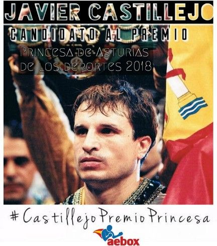 Apoyo Candidatura Castillejo recort