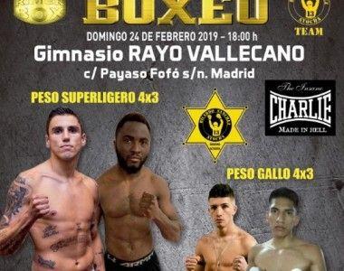 Este domingo velada de Rimer Box con combates profesionales en el Rayo
