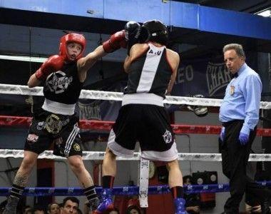 Ultimas plazas para el curso de Árbitros y Jueces de la Federación Madrileña de Boxeo